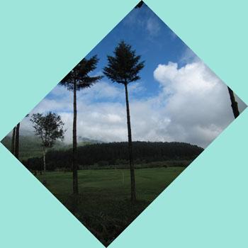 9月9日朝の飯綱東高原