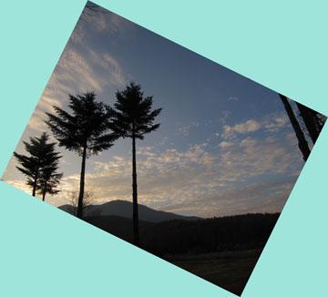 雲11月14日