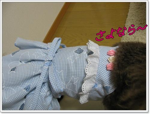 002_20110912215431.jpg
