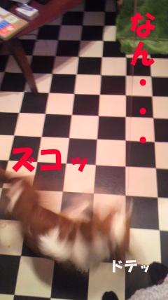20110411-6(セリフ)