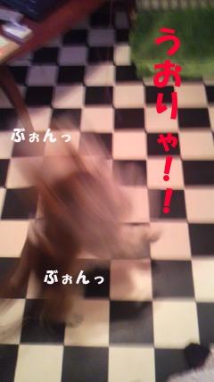 20110411-4(セリフ)