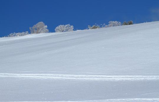 2011.01.10-雪-01