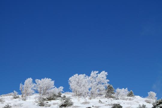 2011.01.10-樹氷-10