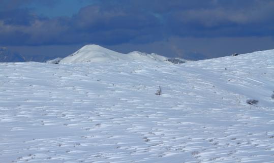 2011.03.03-雪原-02