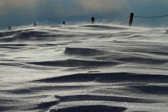 2011.03.08-地吹雪-01