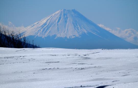 2011.03.27-富士-01
