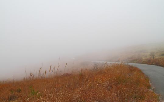 2011.10.24-霧ヶ峰-15