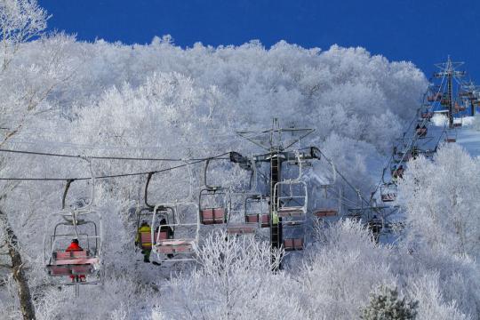 2011.01.10-樹氷とリフト-