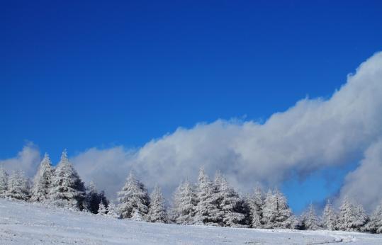 2011.12.09-新雪-13
