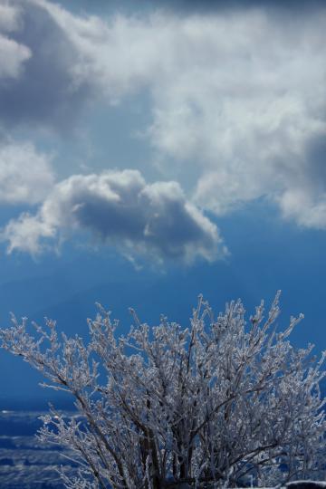 2012.01.07-樹氷-