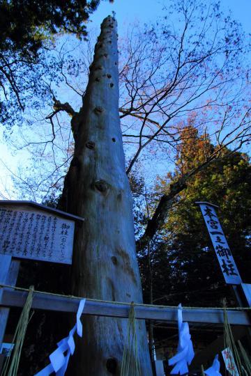 2012.01.12-御柱-09