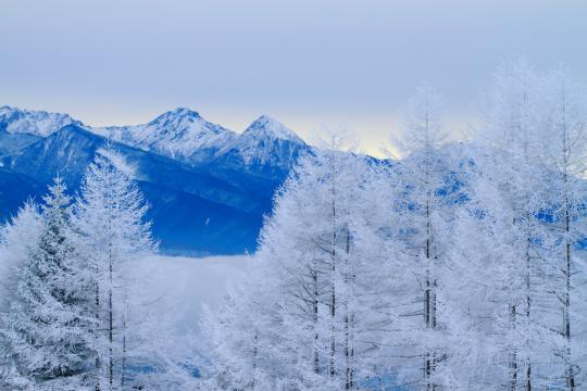 2012.01.16-八ヶ岳 3