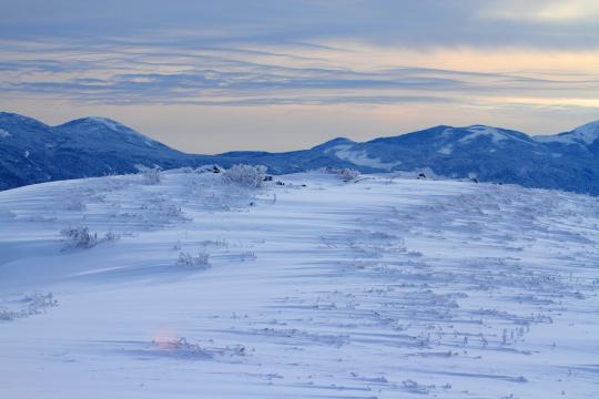 2012.01.22-雪原-13