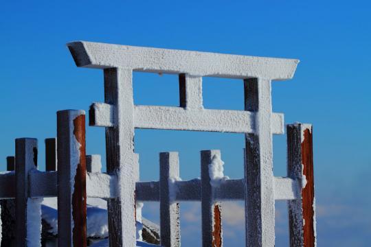 2012.01.24-神社-25