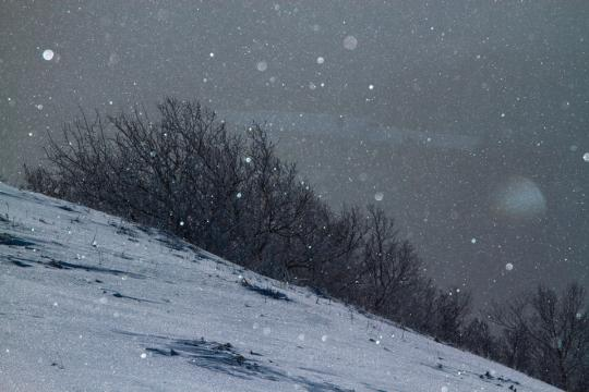 2012.01.28-キラキラ-9