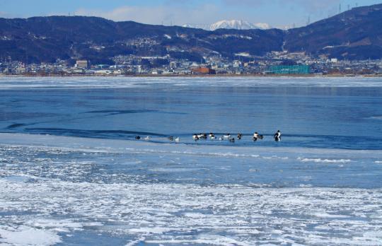 2012.02.03-諏訪湖-9