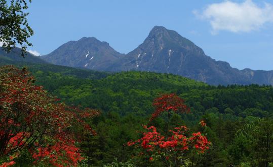 2010.06.17-八ヶ岳-01