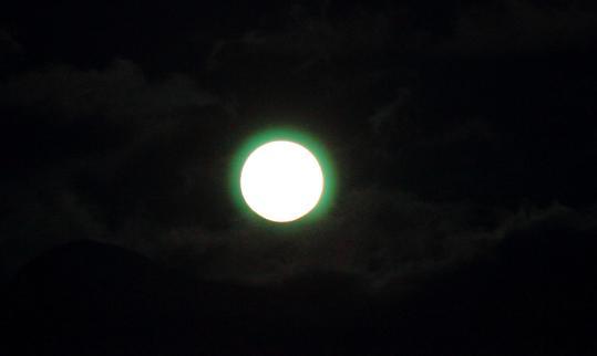 2012.04.06-緑の月光-29