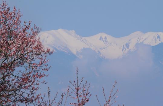 2012.04.19-高遠-105