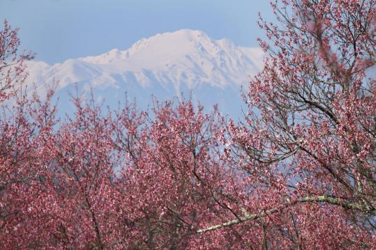 2012.04.19-高遠-109