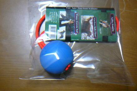 008_convert_20110209190559.jpg
