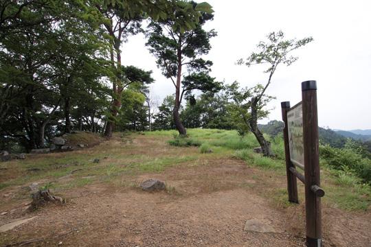 20100813_tsuwano_castle-02.jpg