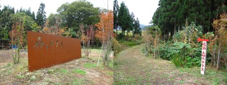 森のテラス ダリア1