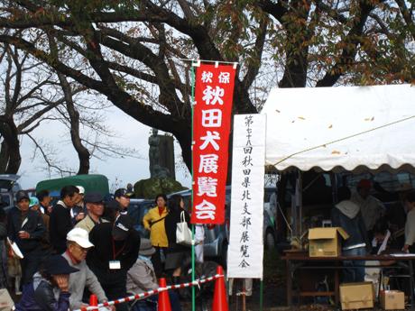 11月 秋田犬展覧会 2
