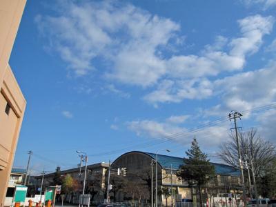 11月17日(木)の天気