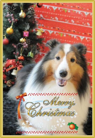 クリスマスフォトカード