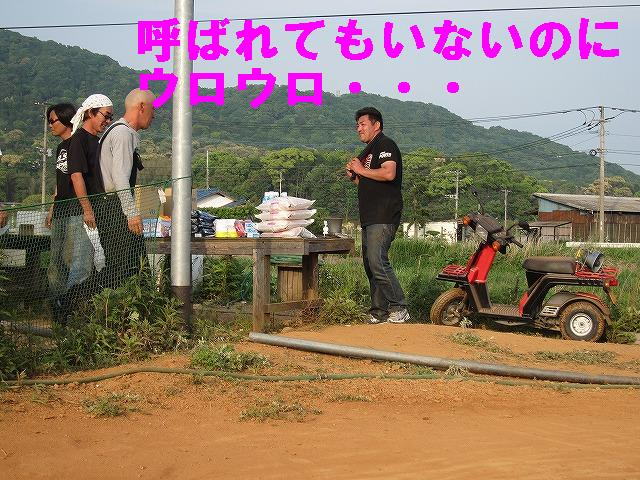 IMG_0372_20110517234627.jpg