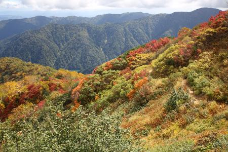 錦色の登山道を下る