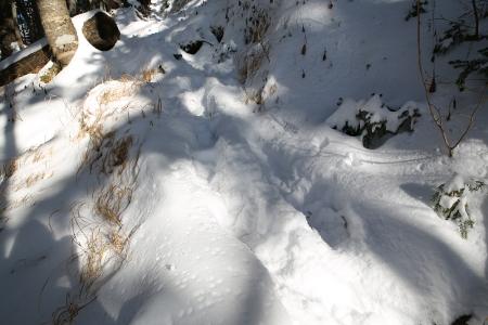 御嶽展望台付近から頂上までは20~30cm