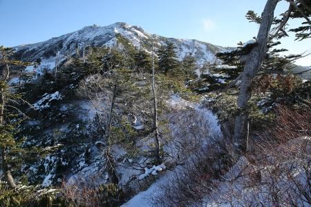 雪稜だった場所は森林に