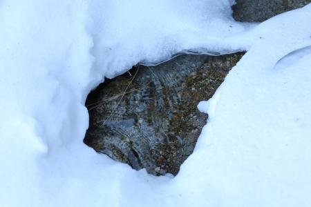 冬でも涸れない鳳凰小屋の水場
