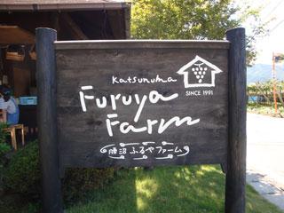 furuyafarm_20110917-2.jpg