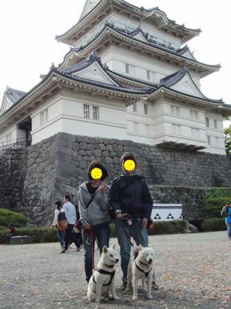 5.42小田原城