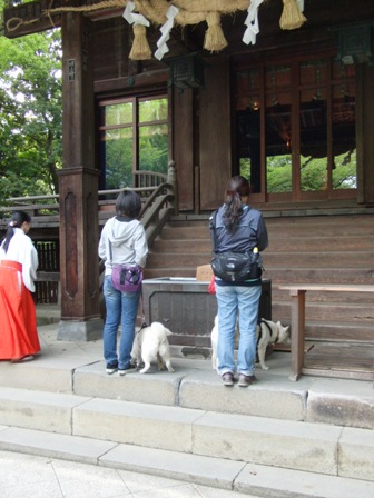 5.42二宮尊徳神社1