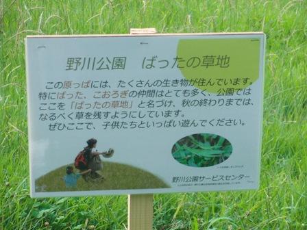 7.3草地の説明
