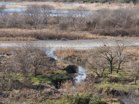 下溝駅前県道46号線より相模川、八瀬川を望む