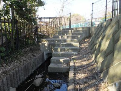 八瀬川源流・大杉の池