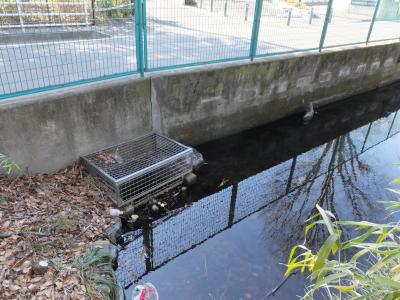 大杉の池排水口