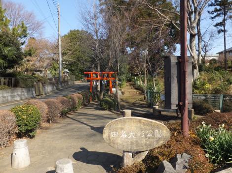 田名大杉公園