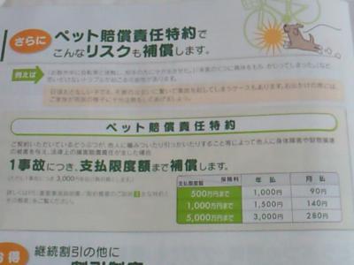 NEC_2282.jpg