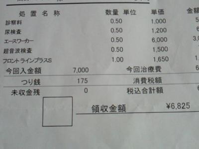 NEC_2360.jpg