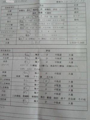NEC_2361.jpg