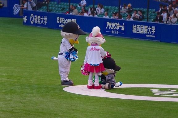 千葉マリン (149)