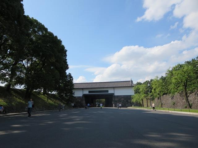 cebu 41 (89)