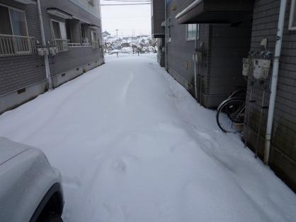 雪かき必要