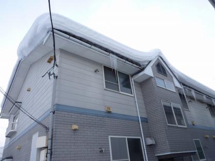 屋根に雪が..
